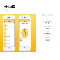 VirtualQ (iOS)