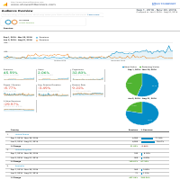 eCommerce Site SEO Performance Report