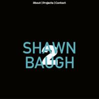 www.shawnbaughcreative.com