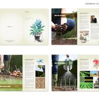 Portfolio Thumbnail 39