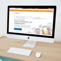 WordPress website for Net One Click.