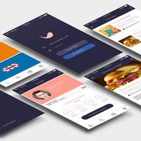 Birdplan iOS